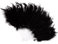 eventail-plume-noir-femme-fp419_2_fr1.pn